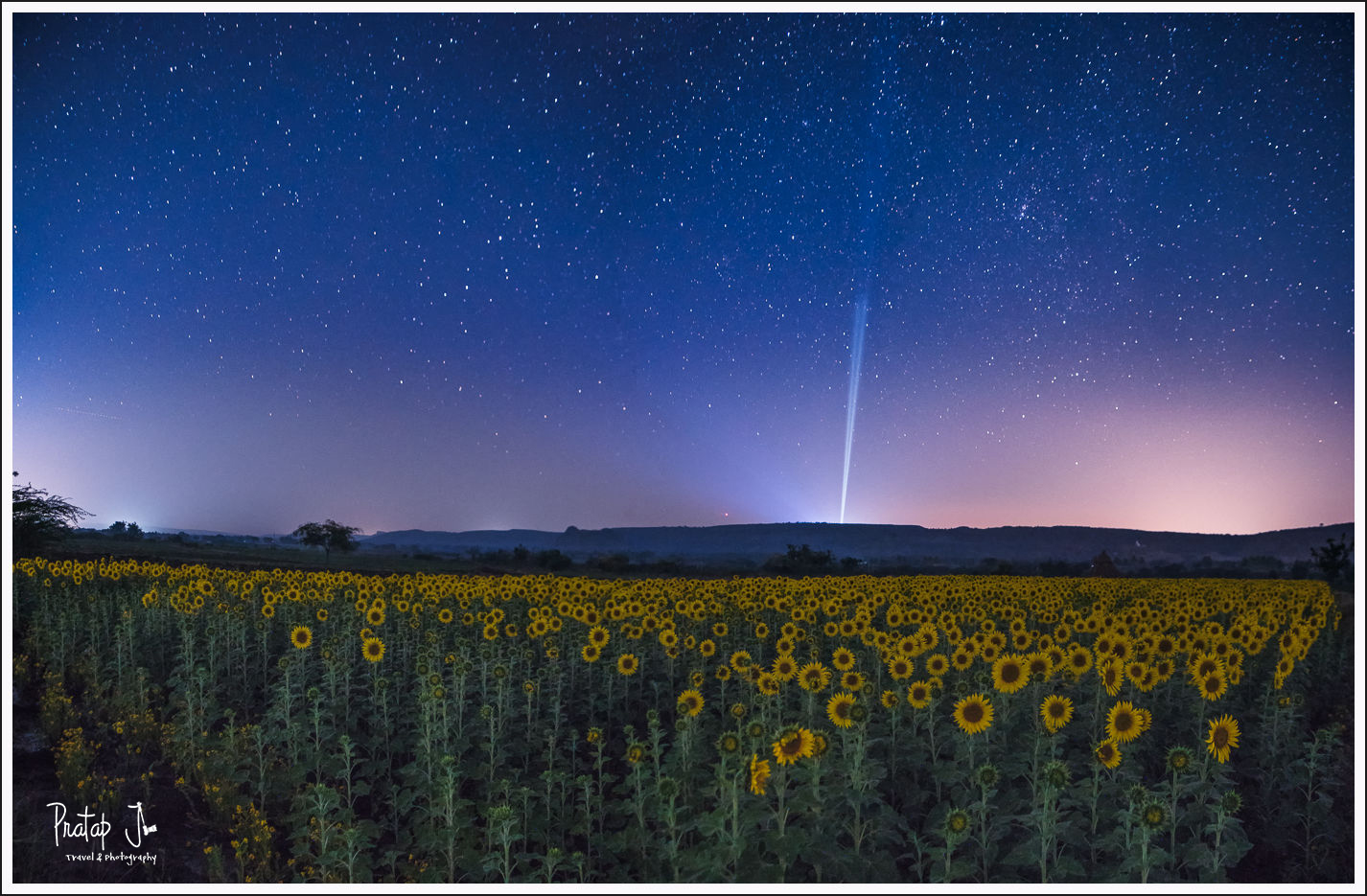 Night-Sky-Above-Sunflower-Fields_pj.jpg