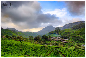 The Feel of Monsoon in Munnar