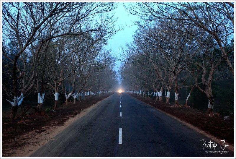 One Headlight on the Highway