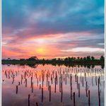 Sunrise at Nelligudda kere near Bidadi