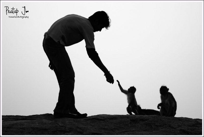 Monochrome image of Man feeding a monkey
