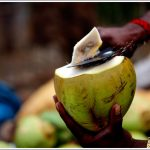 Slicing a Tender Coconut