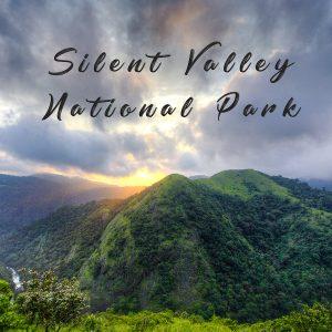 Silent Valley National Park (Kerala)