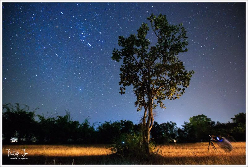 Under a Canopy of Stars